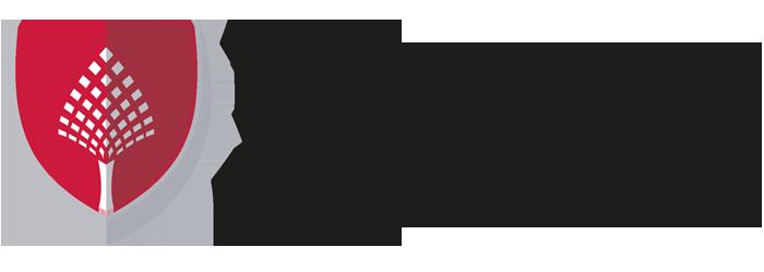 İngilizce Hazırlık Okulu | Kıbrıs Sağlık ve Toplum Bilimleri Üniversitesi logo